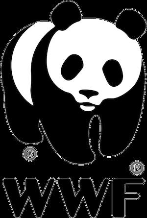 WWF - Keyhole Influencer Analytics CLlents