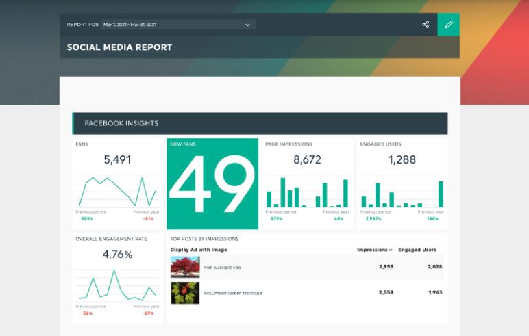 Social Media Analytics Tools: DashThis